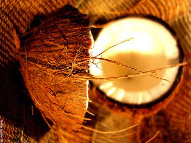 olio-di-cocco-il-doposole-vegetale